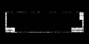 logo_alcina_black